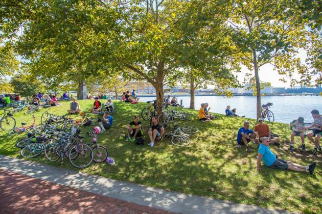 Resting by the water at the 2014 Tour Du Port. Image by David Choy